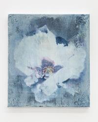 Arjan van Helmond, White Flower