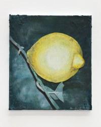 Arjan van Helmond, Lemon