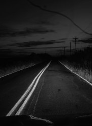 Bryan Schutmaat, Road C, 2020 ( from County Road Series )