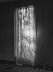 Bryan Schutmaat, Window, 2020 ( from County Road Series )