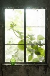 Choki Lindberg, Window 3 (Bottle)