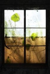 Choki Lindberg, Window 5 (Necklace)