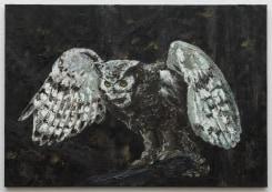 Ronald Ophuis, Owl