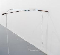 Saskia Noor van Imhoff, flat when moist, curling inward when dry