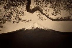 Paul Cupido, Fuji #12