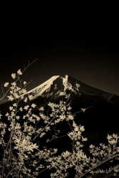 Paul Cupido, Fuji #3, Japan