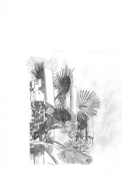 Tasio Bidegain, Palmtree