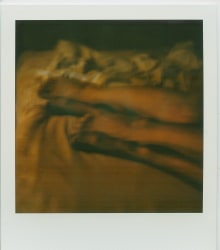 Margaret Lansink, Polaroid body maps II