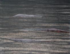 Manu Engelen, Falling Water