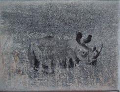 Peter Redert, Rhinoceros