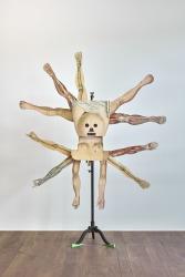 Patrick Van Caeckenbergh, Le monde à l'envers (Het masker)