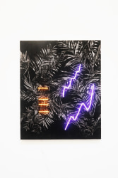 Thijs Zweers, Dance Dance Revolution XIII