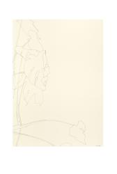 Ronald Zuurmond, Untitled (31082018)