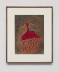 Elizabeth Ibarra, Red Jellyfish