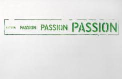 Job Koelewijn, Passion