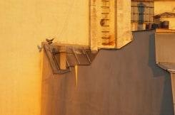 Willem Diepraam, Uit mijn raam, Parijs