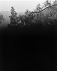 Awoiska van der Molen, #589-5