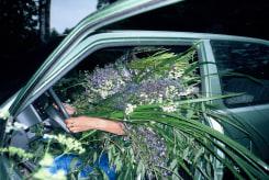 Melanie Bonajo, Fatal Flower Garden (with Kinga Kielczynska)