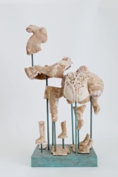 Bouke de Vries, Deconstructed Bactrian camel
