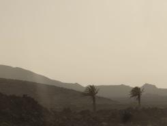 Cleo Goossens, Desert Daze