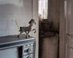 Bryan Schutmaat, Toy Horse