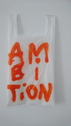 Anne-Lise Coste, Ambition Bag