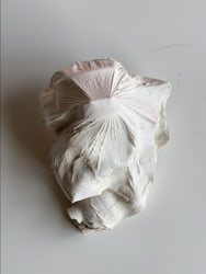 Atousa Bandeh Ghiasabadi, Lost groceries 6 - A tribute to the incidental victim