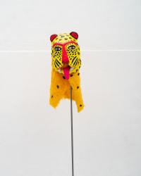 Carmen Schabracq, Jaguar