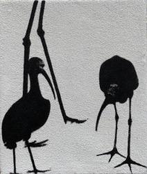 Peter Redert, Ibis (noir)