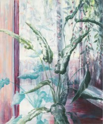 Marijke van Seters, Pink Wall