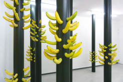 Lola Keyezua, Never Too Old To Cut The Banana When Erected - Installation