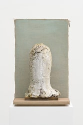 Mark Manders, Homunculus Head