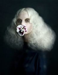 Justine Tjallinks, Silence