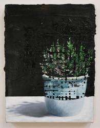 Jeppe Lauge, My Plants IV