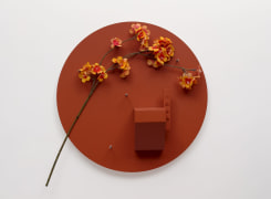 Wesley Meuris, Ornamental Flower (I)