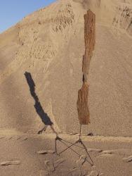 Robert Soroko, Tree bark sculpture #2