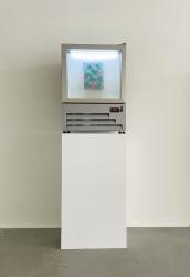 Daan den Houter, Icepainting in freezer on pedestal