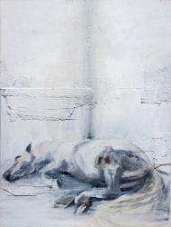 Aldo van den Broek, De witte dood