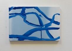 Koen van den Broek, Blue Crack II