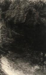 Renie Spoelstra, Reflection, Summertime #1