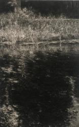 Renie Spoelstra, Reflection, Summertime #2