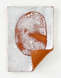 Salim Bayri, Pie Chart