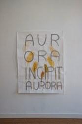 Daniele Formica, Aurora Incipit Aurora