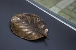 Sarah van Sonsbeeck, Leaf #3