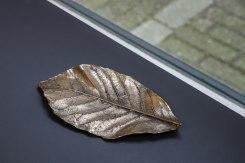 Sarah van Sonsbeeck, Leaf #2
