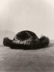 Paul Kooiker, Untitled (Beauty Paper)