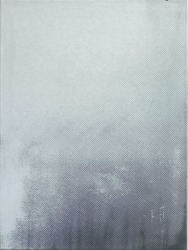 Joan van Barneveld, Silver 1
