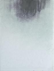 Joan van Barneveld, Silver 2