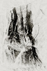 Margaret Lansink, Feminine