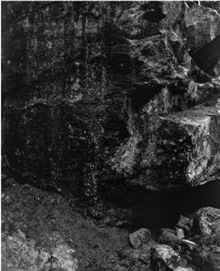 Awoiska van der Molen, 563-8